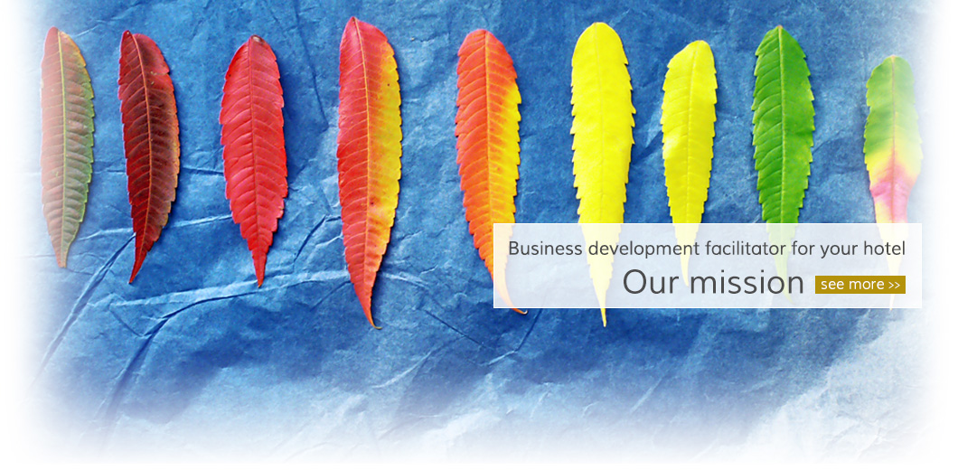 Business development facilitator for your hotel [ Our mission ] see more >>